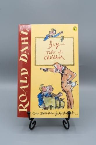 Boy - Tales of childhood